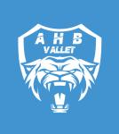 http://handball-vallet.fr